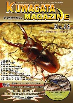 画像1: ★クワガタマガジンNo,43/DVD付★